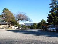 1月25日京都御苑 清水谷家の椋