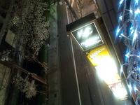 2010年04月06日