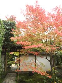 一乗寺の金福寺