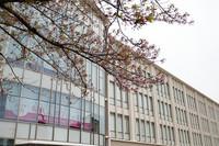 桜の季節も過ぎ 花のある大学48