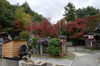 松ヶ崎大黒天に紅葉を観に行きました