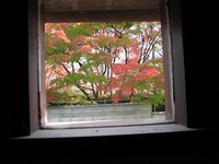 店の中の窓からの借景