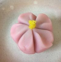 上生菓子《桜》