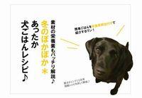 犬の手作り食レシピ、配布を開始しました^^