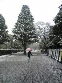 2月9日。京都にしては大雪。