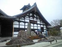 雨の天龍寺