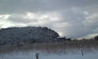 深泥ヶ池は今日は雪だった