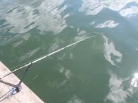 久美浜湾のエサ釣り