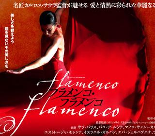 映画「フラメンコ・フラメンコ」
