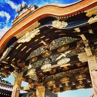 ≪ 二条城 ≫ 公式日本語ガイドツアー