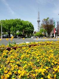 ≪ 初夏の陽気に ≫ in 名古屋