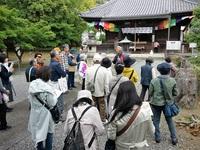 京都さんぽ ≪ 乙訓寺の牡丹、光明寺の新緑へ ≫