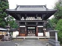 ≪ 紫陽花 ≫ in 梅宮大社・神苑