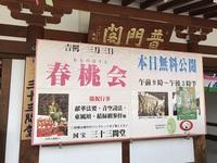 3/3(金) ≪ 春桃会 ≫ in 三十三間堂