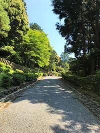 5/20(土) ≪ 天皇陵めぐり シリーズ第4弾 ≫
