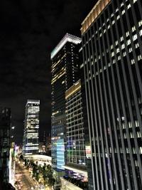 8/31(木) ≪ 東京はヒンヤリ ≫