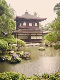 ≪ 雨の銀閣寺 ≫