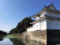 11/1(水) ≪ 二条城 常設・日本語ガイドツアー、開始! ≫