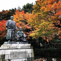 ≪ 秋の紅葉が終わりました ≫