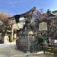 3/4(日) ≪ 菅大臣神社 ≫ クラブツーリズム早朝さんぽ