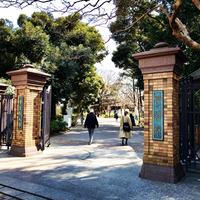 3/3(土) 《  東京・学習院さくらアカデミー  》