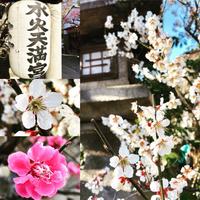 3/12(月) 《  水火天満宮  》