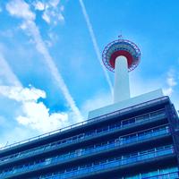 1/16(火) 《  京都タワー  》