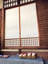≪ 舞妓さん ≫ らくたび京町家