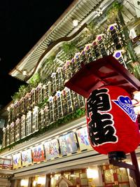 《  広島から、京都へ帰ってきました!  》