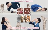大ヒットウェブドラマ「恋愛動物」日本初独占放送中!