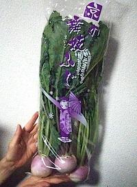 京の舞妓ふじ