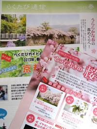 京都 とっておきの桜さんぽ 2013