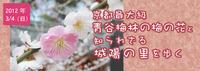 3月4日(日) 青谷梅林の梅の花と知られざる城陽の里を歩く