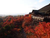11月24日 六波羅蜜寺・秘仏の特別開帳と清水寺から清閑寺