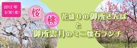 3月30日(金)花ざかりの御所さんぽ&御所雲月ランチ♪