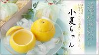 夏の和菓子「小夏ちゃん」