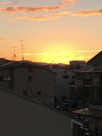 今日は寒い予報の京都市でしたが…