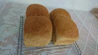 全粒粉入り白ごま食パン