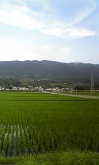 こんにちは!吉井町です!