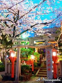夜の祇園へ