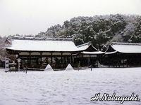 上賀茂さんの雪景色