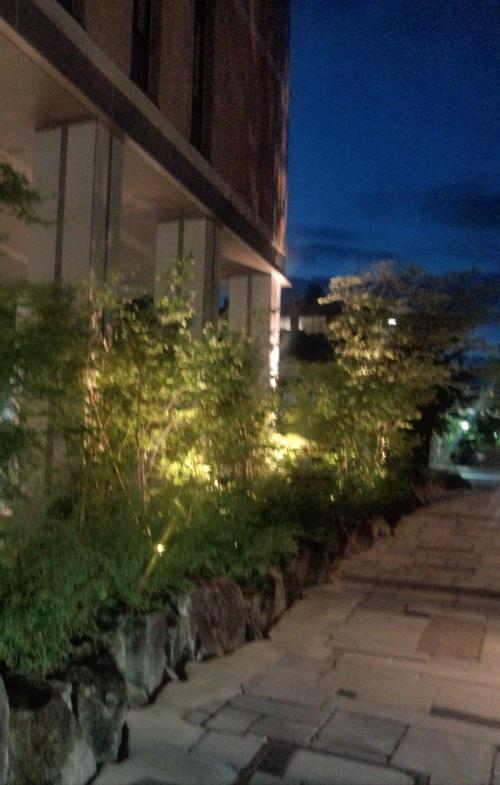 夜のキャンパス