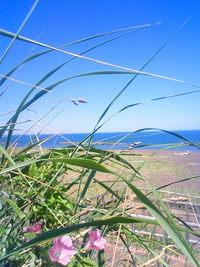 オホーツクの海と空