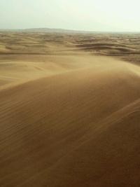 砂丘から砂漠を見る