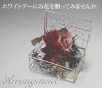 ホワイトデーにお花を贈りませんか。