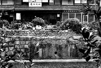 『京電遺跡・廃線跡を巡る』~城南線の橋桁~