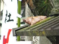 護王神社の亥さん ダイビングポーズ!
