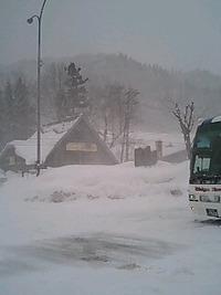 只今、岐阜県白鳥。 2010/02/06 14:00:43