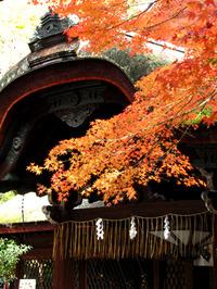 下御霊神社・2009年11月26日