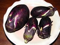 近江の伝統野菜「下田なす」 2012/08/14 13:29:43
